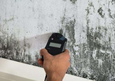Renoliux Restore mould removal