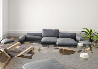 Renoliux Restore water flood